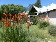 Exterior florido